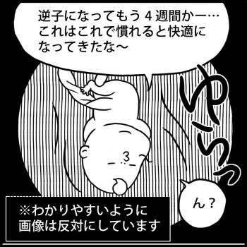 連載:オイラの大冒険 第24話<br /> 「でんぐり返し(24w)」